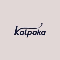 Webthrob Advertising Agency in Kerala Website Designing Agency in Kerala Social Media Marketing 7034034444